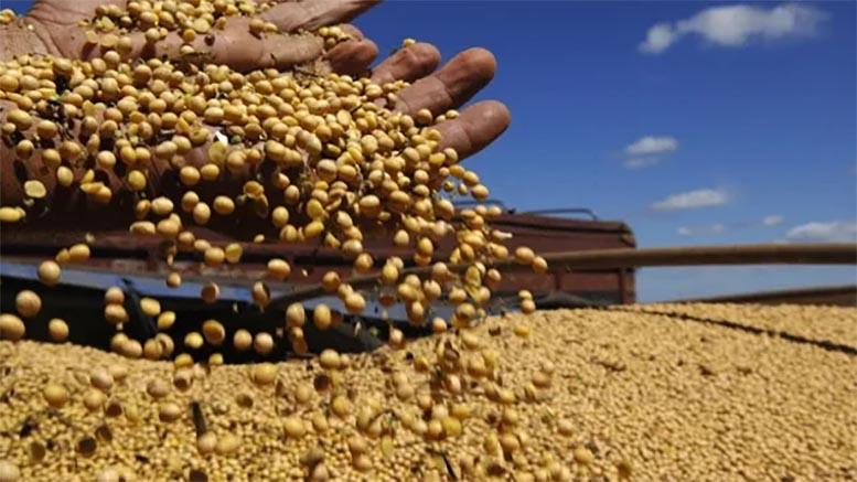 El 61,8% de la renta agrícola no le llega a quien la produjo
