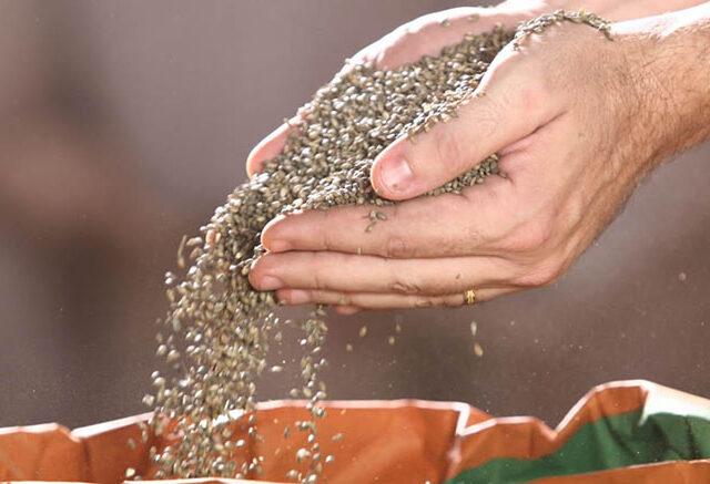 Seminario sobre producción de semillas forrajeras templadas