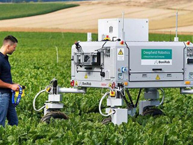 Los robots y la inteligencia artificial en la agricultura moderna