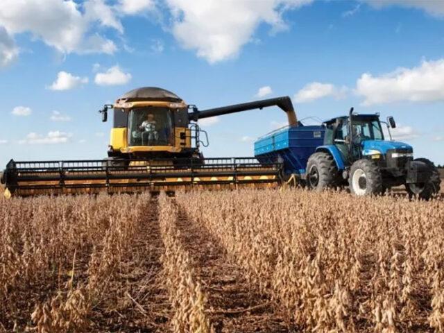 Informe del USDA: Se espera un incremento en las existencias finales de granos