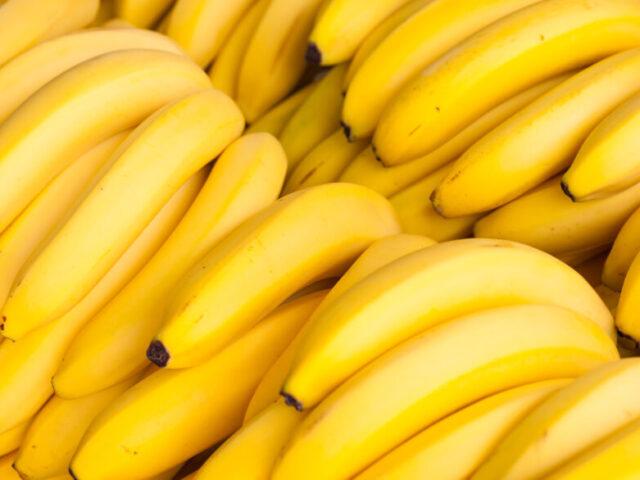Producción de banano de Latinoamérica crecería a 36 millones de toneladas para 2030