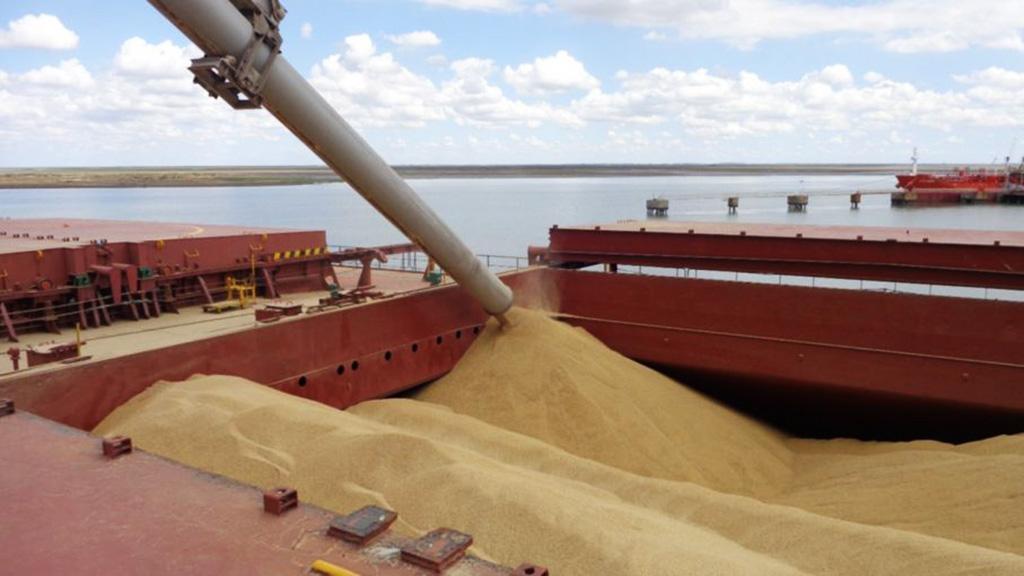 Actualización de requisitos en el Registro de Exportadores de Granos a China