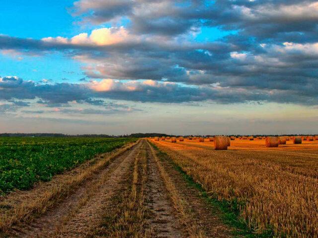 La CEEA criticó la medida oficial que beneficia con descuento en retenciones a las petroleras que exporten productos agroindustriales
