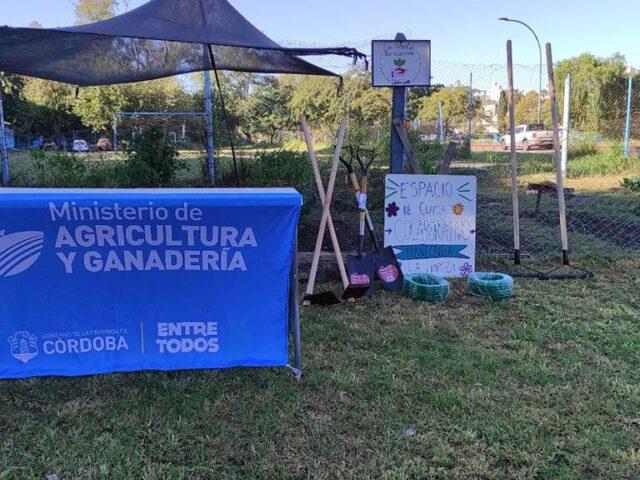 Huerta en tu Hogar: cerró la inscripción y arranca la distribución de semillas primavera-verano