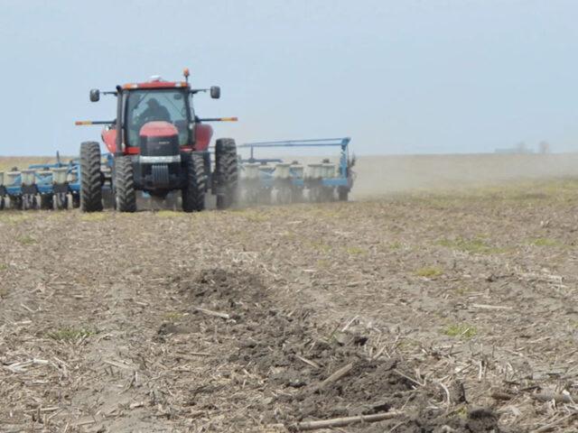 Advierten por faltante de agua para culminar la siembra de maíz