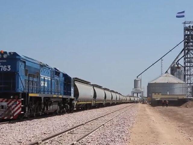 Creció 30% el transporte de granos en trenes en el territorio argentino