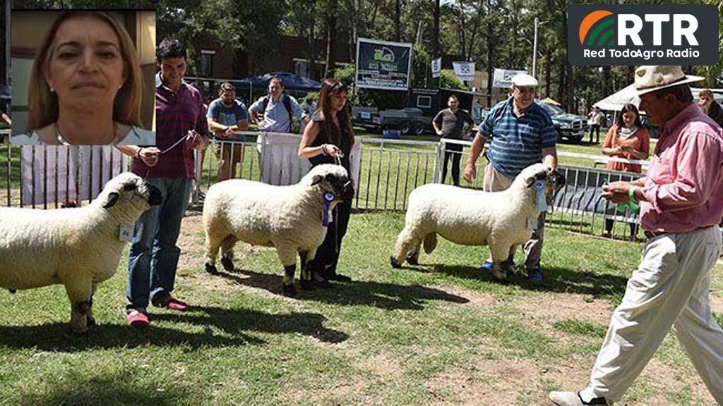 Córdoba, una provincia con «potencialidad» para ser productora ovina