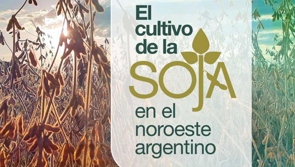 El cultivo de la soja en el Noroeste Argentino
