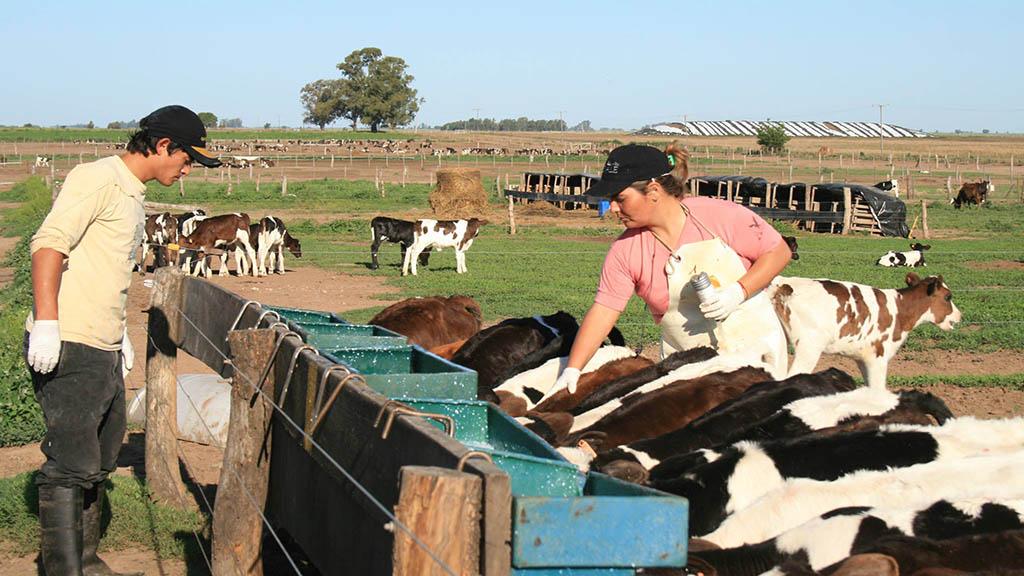 En Córdoba, lanzaron un programa para la inserción laboral en el sector agropecuario